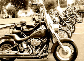 bike-row-sepia.jpg