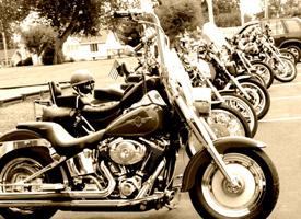 bike-row-sepia.jpg